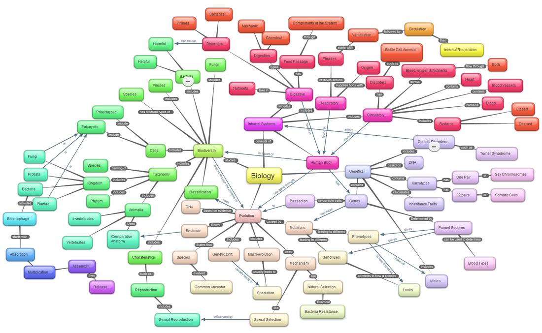 Concept Map Bacteria.Course Concept Map Collage